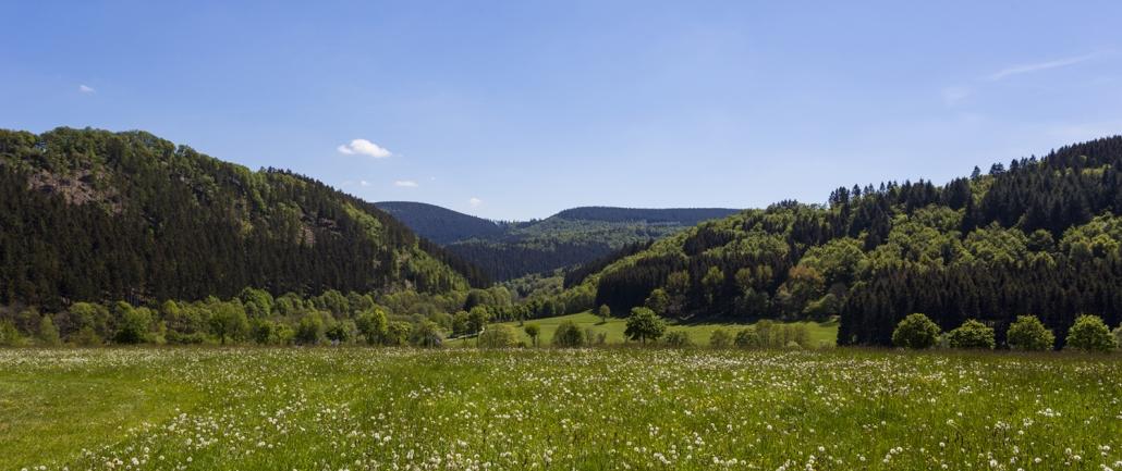 Landschaft Sauerland
